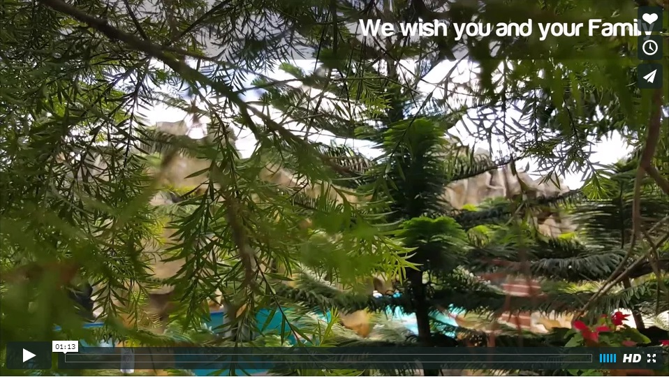 Video: Big Rock Farm Resort - New Year Greeting